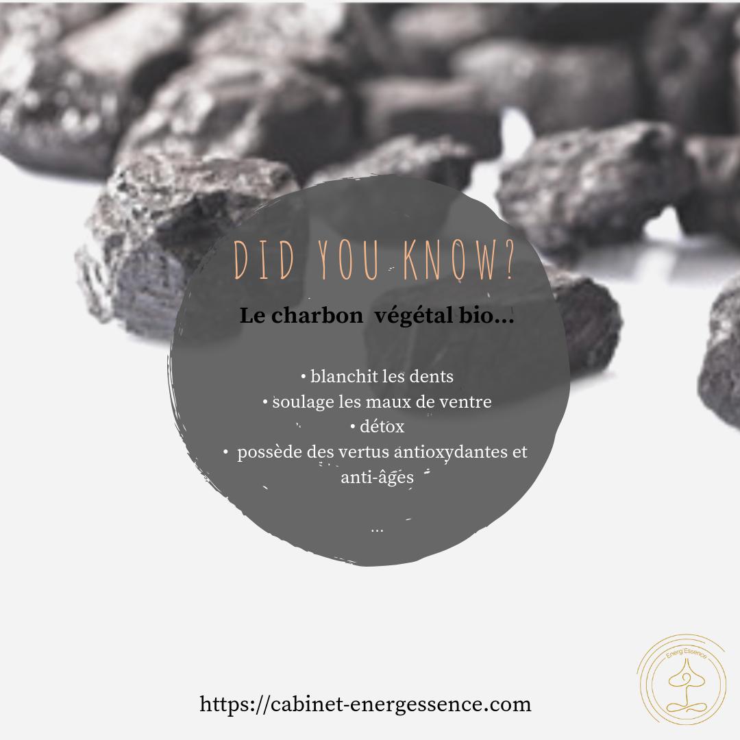 Le charbon végétal bio alias l'éponge désintox